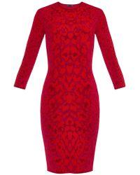 Alexander McQueen Leopard-Intarsia Stretch-Knit Dress - Lyst