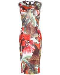 Erdem Maura Floral-Printed Dress - Lyst