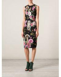 Dolce & Gabbana Flora and Fauna Print Dress - Lyst