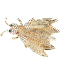 TOPSHOP Womens Freedom Found Collection Bug Brooch  Clear - Metallic