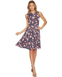 Adrianna Papell - Printed Pleated Fit And Flare Dress - Lyst