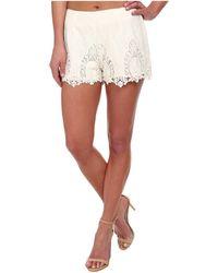 Bardot - Lace Shorts - Lyst
