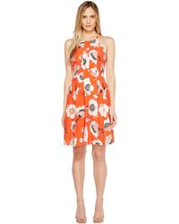 Adrianna Papell - Grand Vintage Etching Print Seamed Fit And Flare Seamed Halter Dress - Lyst