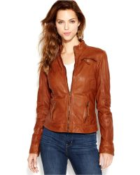 Lucky Brand Lucky Brand Stand-Collar Leather Bomber Jacket - Brown