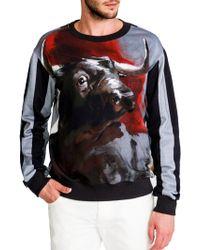 Dolce & Gabbana Bull Striped Sweatshirt multicolor - Lyst