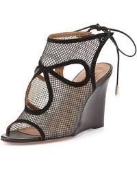 Aquazzura Sexy Thing Cut-Out Mesh Court Shoes - Black