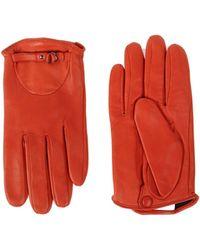 Cacharel Gloves - Lyst