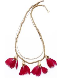 Serefina - Dancing Feathers Necklace - Cherise - Lyst