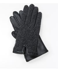 Ann Taylor Leather Knit Gloves - Lyst