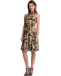 Cynthia Steffe Meera Floral Tie Neck Fit and Flare Dress - Lyst