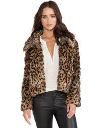 Bardot Crop Faux Fur Jacket - Multicolor