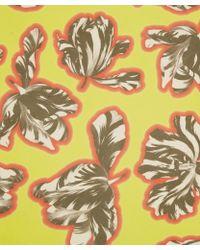 Jonathan Saunders - Yellow Tulips Print Silk Scarf - Lyst