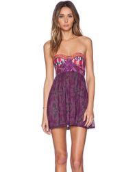 Maaji Plum Stakes Mini Dress - Lyst