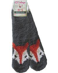Pj Salvage - Fox Bed Socks - Lyst