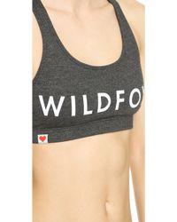 Wildfox Classic Fox Sports Bra - Vintage Lace - Lyst