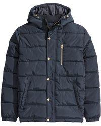 H&M | Padded Jacket | Lyst