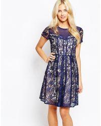 Oasis Lace Skater Dress - Blue