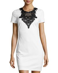 Alexia Admor Shortsleeve Fitted Sequin  Lace Dress - Lyst