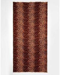 Oasis Animal Scarf - Multicolour