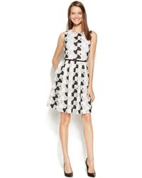 Calvin Klein Geometric-Lace Belted Dress - Lyst