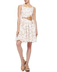 Michael Kors Lace Dress With Leather Collar - Lyst