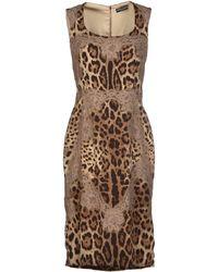 Dolce & Gabbana Khaki Knee-length Dress - Lyst