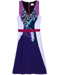 Peter Pilotto Amethyst Racer Dress - Lyst