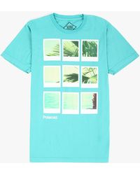 Altru Polaroid Palm Beach Tee green - Lyst