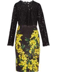 Dolce & Gabbana Mimosa-Print Brocade And Lace Dress - Lyst