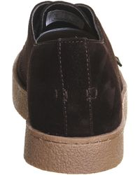 Farah Fame Lo Lace Up - Brown