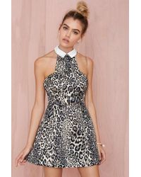 Nasty Gal Collection Wild At Heart Fit  Flare Dress - Lyst