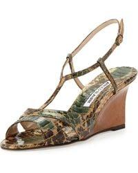 Manolo Blahnik Atracon Camo Snake Wedge Sandal Army Green - Lyst