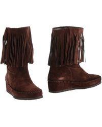 Daniela Fargion Ankle Boots - Brown