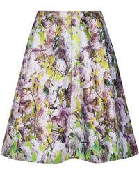 Ted Baker Goldina Window Blossom Skirt - Lyst
