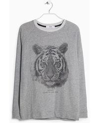 Mango Tiger-Print Sweatshirt gray - Lyst
