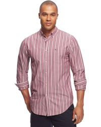 Lacoste Classic Fit Bengal Stripe Sport Shirt - Lyst
