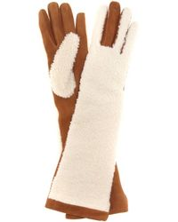 Acne Studios Mytheresa.com Exclusive Greta Shearling And Suede Gloves - Brown