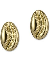 Sam Edelman Dreamcatcher Goldtone Cowrie Shell Stud Earrings - Metallic