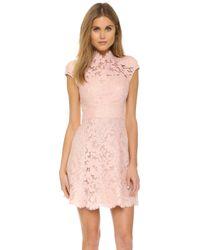 Lover | Warrior Lace Mini Dress - Dusty Pink | Lyst