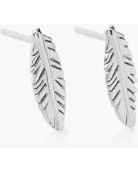 ALEX AND ANI 'Symbolic' Feather Stud Earrings - Lyst
