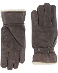 Tru Trussardi Gloves - Brown