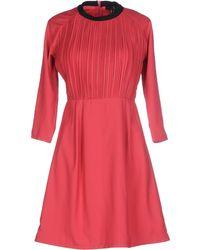 Cutie | Short Dress | Lyst