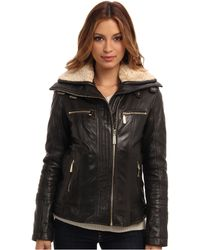 Vince Camuto Leather Moto Jacket with Fauxfur Collar - Lyst