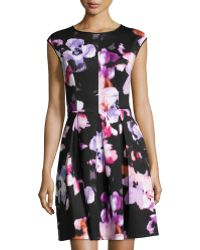 Maggy London Colorblock Scuba Dress