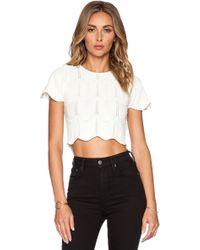 Lucy Paris - Seashell Crop Sweater - Lyst