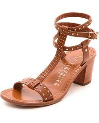 Ivy Kirzhner Olympian Studded Sandals - Brown