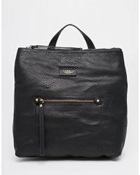 Fiorelli - Lexi Backpack - Lyst