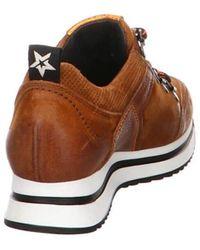 Paul Green Sneakers - Braun