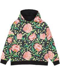 Desigual Sweatshirt 'ROIANE' - Grün