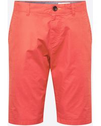Tom Tailor Shorts 'Josh' - Rot